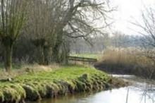 De Dommel meandert in Noord-Limburg